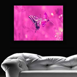 Diamonds Canvas DC48 Tablo - 50x70 cm