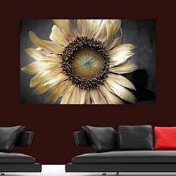 Diamonds Canvas DC212 Tablo - 50x70 cm