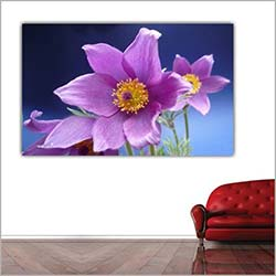 Diamonds Canvas DC246 Tablo - 50x70 cm