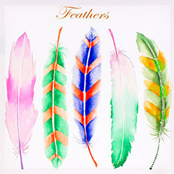 EuroFlora 96335 Feathers Kanvas Tablo - 40x40 cm