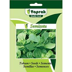 Yaprak Semizotu Tohumu - 10 gr