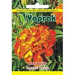 Yaprak Karagöz Çiçeği Tohumu