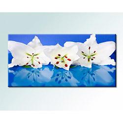 Serenity Home 1PRC1648 Mdf Tablo - 50x100 cm