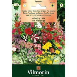 Vilmorin Karışık Balkon Çiçeği Tohumu