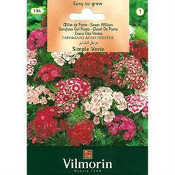 Vilmorin Hüsnüyusuf Çiçeği Tohumu