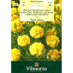 Vilmorin Sarı Kadife Çiçeği Tohumu