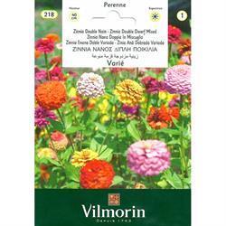Vilmorin Kirlihanım Çiçeği Tohumu