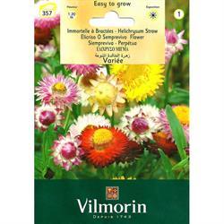 Vilmorin Karışık Ölümsüz Çiçeği