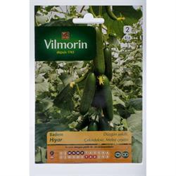 Vilmorin Salatalık Tohumu
