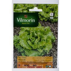 Vilmorin Kıvırcık Baş Salata Tohumu