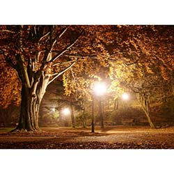 Duvar DLC 1202 City & Mix Led Kanvas Tablo - 50x70 cm