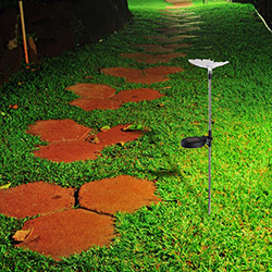 Simple Living 003 Solar Lamba