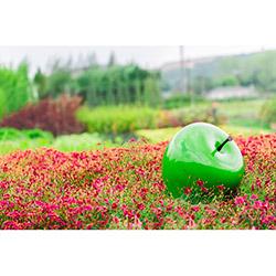Greenmall 066-OY Dekoratif Elma Bahçe Süsü