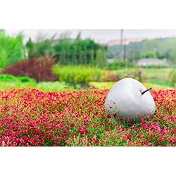 Greenmall 066-Y Dekoratif Elma Bahçe Süsü