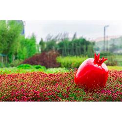 Greenmall 074-K Dekoratif Nar Bahçe Süsü