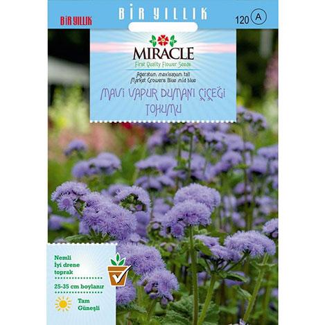 Miracle Ageratum Mexicanum Mavi Vapur Dumanı Çiçeği Tohumu - 1000 Tohum
