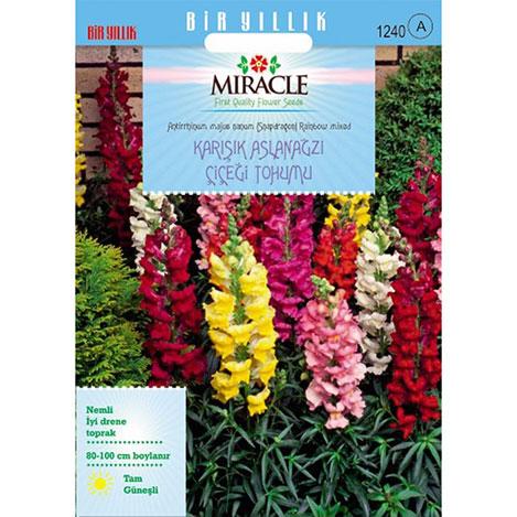 Miracle Antirrhinum Rainbow Mixed Karışık Aslanağzı Çiçeği Tohumu- 3000 Tohum