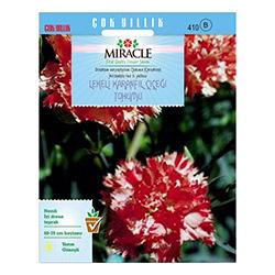 Miracle Avranchin Lekeli Karanfil Çiçeği Tohumu - 190 Tohum