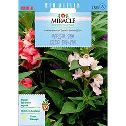 Miracle Balsamina Karışık Renkli Kına Çiçeği Tohumu - 150 Tohum