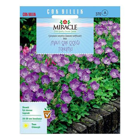 Miracle Blue King Mavi Çan Çiçeği Tohumu- 1000 Tohum
