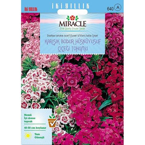 Miracle Bodur Hüsnüyusuf Çiçeği Tohumu - 690 Tohum