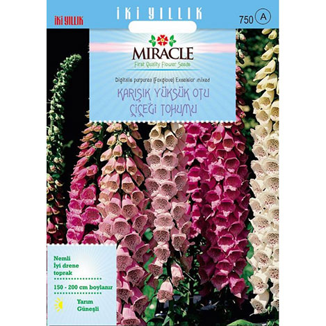 Miracle Excelsior Mixed Karışık Renkli Yüksükotu Çiçeği Tohumu - 700 Tohum