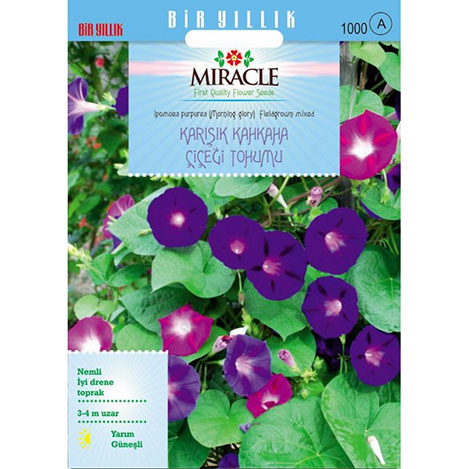 Miracle Fielgrown Kahkaha Çiçeği Tohumu - 115 Tohum