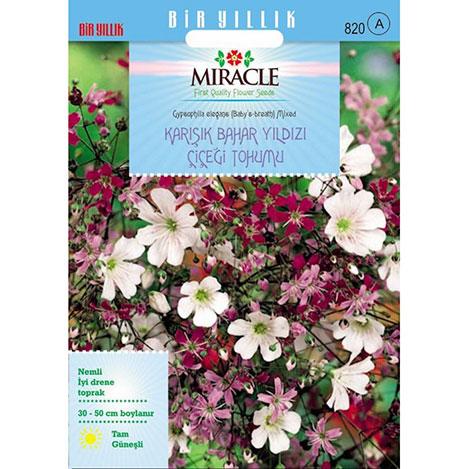 Miracle Gypsophila Elegance Mixed Bahar Yıldızı Çiçeği Tohumu - 1100 Tohum