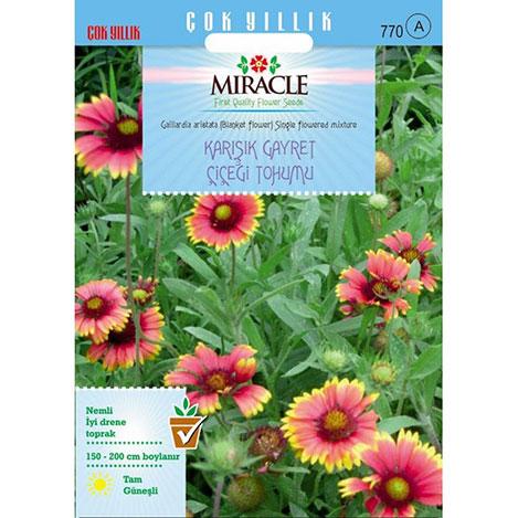 Miracle Karışık Gayret Çiçeği - Giallardia Mix Tohumu - 190 Tohum