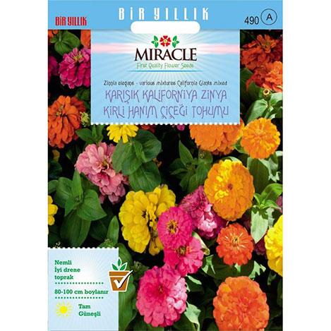 Miracle Karışık Kaliforniya Zinya Kirli Hanım Çiçeği Tohumu - 150 Tohum