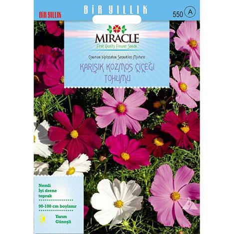 Miracle Karışık Renkli Cosmos - Kozmos Çiçeği - 290 Tohum