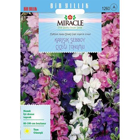 Miracle Karışık Renkli İmperial Giant Şebboy Çiçeği Tohumu - 360 Tohum