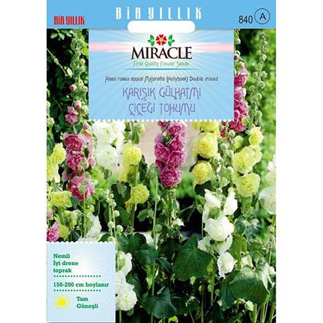 Miracle Karışık Renkli Katmerli Gül Hatmi Çiçeği Tohumu - 40 Tohum