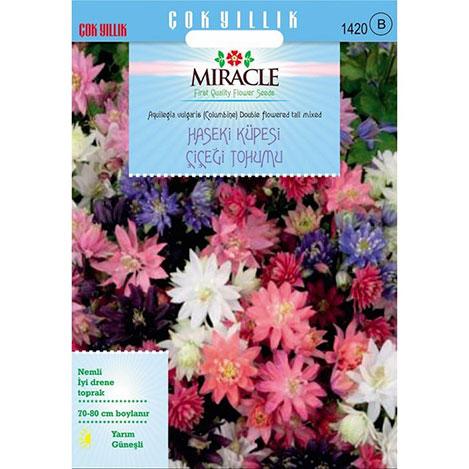 Miracle Karışık Renkli Katmerli Haseki Küpesi Çiçeği Tohumu- 400 Tohum