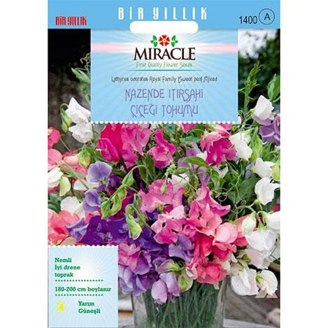 Miracle Karışık Renkli Nazende Itırşahi Çiçeği Tohumu - 24 Tohum