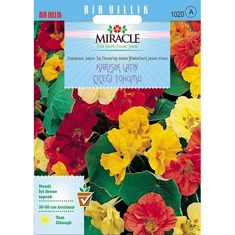Miracle Karışık Renkli Sarmaşık Latin Çiçeği Tohumu - 30 Tohum