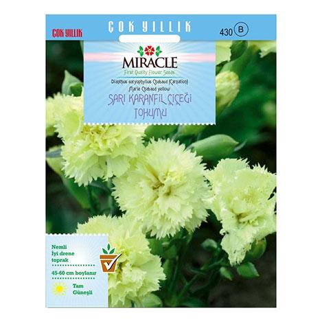 Miracle Marie Chabaud Sarı Karanfil Çiçeği Tohumu - 190 Tohum