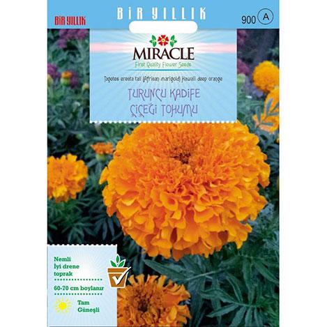 Miracle Turuncu Kadife Çiçeği Tohumu- 290 Tohum