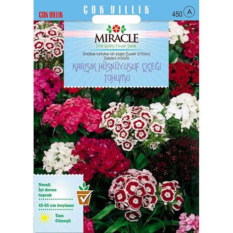 Miracle Uzun Boylu Karışık Renkli Hüsnü Yusuf Çiçeği Tohumu - 690 Tohum
