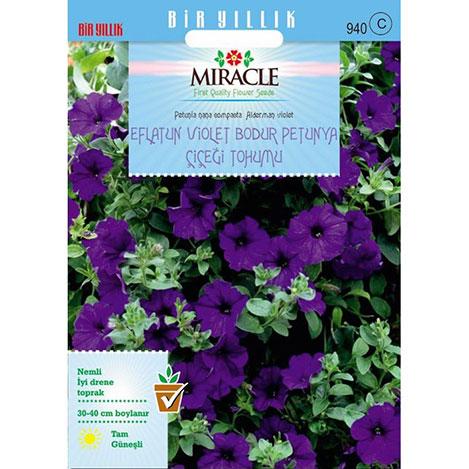 Miracle Eflatun Alderman Violet Bodur Petunya Çiçeği Tohumu - 800 Tohum