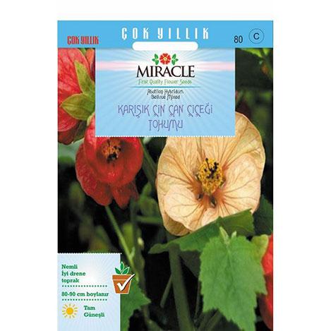 Miracle Karışık Renkli Çin Çan Çiçeği Tohumu - 50 Tohum