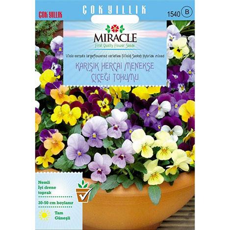 Miracle Karışık Renkli Hercai Menekşe Tohumu - 400 Tohum
