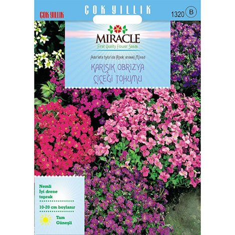 Miracle Rock Cress Aubrieta Karışık Renkli Obrizya Çiçeği Tohumu - 400 Tohum