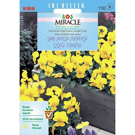 Miracle Sarı Hercai Dev Menekşe Çiçeği Tohumu - 150 Tohum