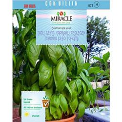 Miracle Tatlı Geniş Yapraklı Fesleğen Tohumu