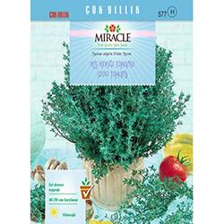 Miracle Kış Kekiği Tohumu