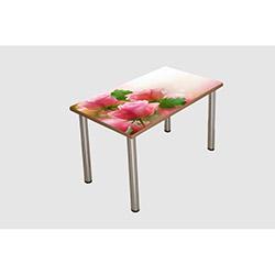 Nav Decoration TGC048 Stella Yemek Masası - Renkli