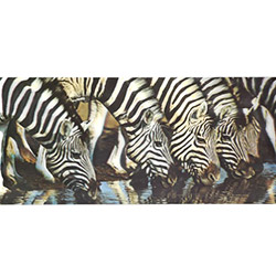 3D Zebra Ailesi Mdf Tablo - 50x25 cm