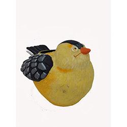 Bosphorus Mumlu Amerikan Kuşu