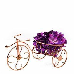 BS Maison Ferforje Bisiklet Çiçeklik - Bakır Rengi